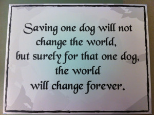 pet adoption. Shelter pets are in no way damaged goods.These animals ...