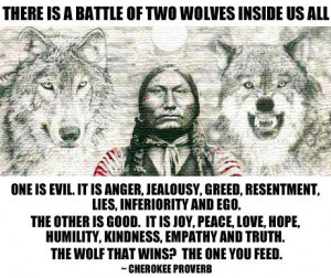 There Is A Battle Of Two Wolves Inside Of All Of Us!
