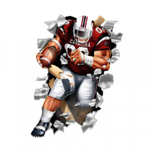 NCAA - South Carolina Gamecocks Football Player Wallcrasher