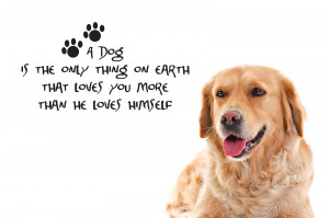 LOSING YOUR BEST FRIEND DOG QUOTES