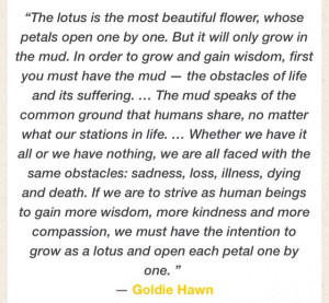 ... Hawn quote in lotus flowersAwesome Quotes, Hawn Quotes, Lotus Flower