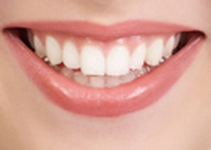 ... teeth re-grow in just weeks, which could in turn mean an end to