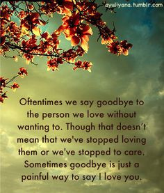 ... Goodbye and I will always carry our love forever no matter what