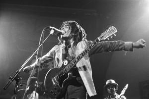 Marley : image 422297