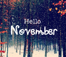 hello november, november, quotes, snow, winter, goodbye october