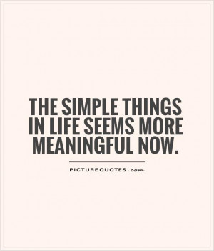 simple things in life quotes