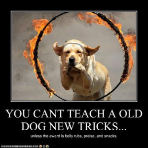 Teaching the Old Dog New Tricks