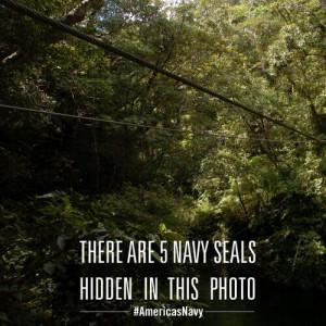 Navy Seals hidden in this picture...