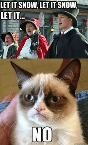 Grumpy Cat's Christmas Compilation (20 Pics)