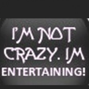 Not Crazy I'm Entertaining quote