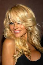 Hair & Hairstyling Tips: Pam Anderson Long Blonde Hair Icon