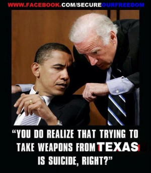 funny gun control