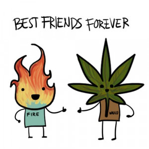 best, fire, forever, friends, funny, lol, text, true, weed