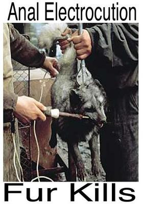 killing animal for fur essay Fur real each year, millions of virtuous animals are tortured ad killed cruelly for the fur on their backs not only is their fur stolen from them but it is.