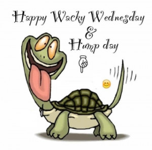 Have a Wacky Wednesday Ladies
