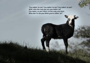 Sassy Goat
