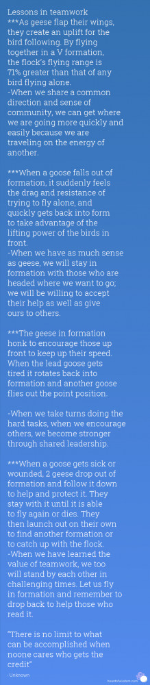 Aviation Quotes About Teamwork
