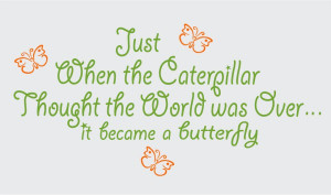 Just When the Caterpillar Thought the World was Over