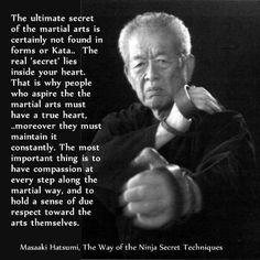 taijutsu # masaaki hatsumi art stuff masaaki hatsumi bujinkan bkdbt ...