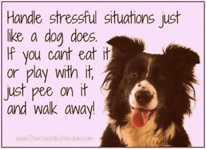 Handful stressful situations like a dog does . . . .