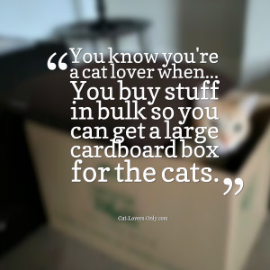 Cat Lover Quotes