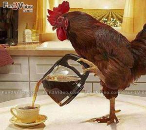 Good Morning Funny Coffee