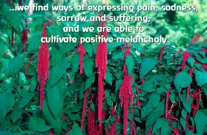 MetaFlora Level Seven: Cultivating the Spiritual Self: Transpersonal ...