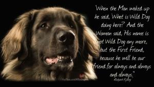 ATT000044Dogs Really Are Man's Best Friend