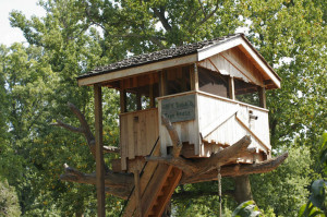 Tree House Gallery