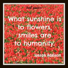 ... # flowers flowers quotes happy quotes quotes smile quotes flowers