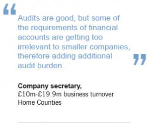 Proposed audit legislation: Good for business or political posturing?