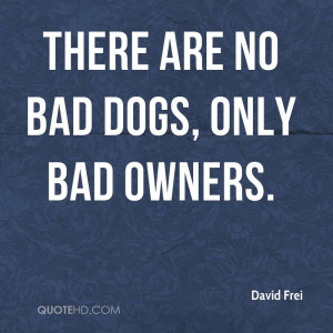 There are no bad dogs, only bad owners.