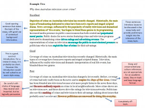 Examples of legal writing