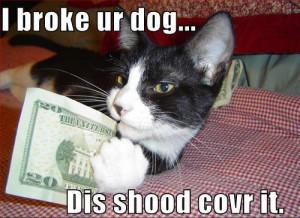 funny+animal+pics+with+funny+sayings+(1).jpg