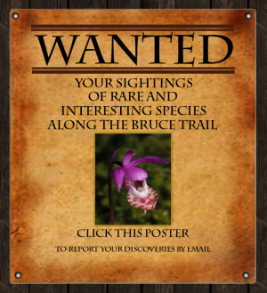 Land Stewardship Wanted Poster