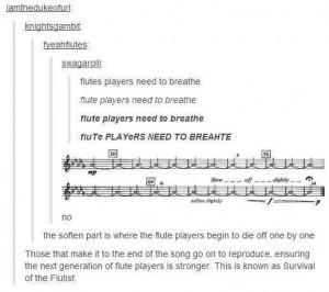 Flute players tumblr