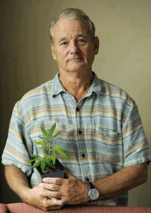 ... that prove Bill Murray really is the most interesting man in the world