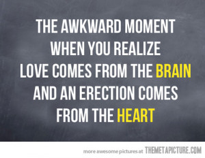 Funny photos funny love brain heart quote