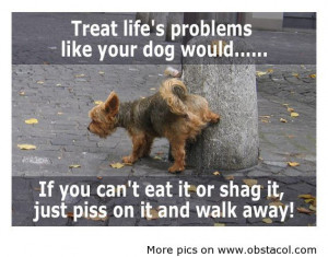 com treat lifes problems like your dog would funny quote