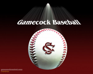 Gamecock Baseball Picture
