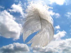 see angels everyday and have done so since I was a baby. I see them ...