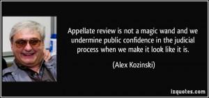 Appellate review is not a magic wand and we undermine public ...