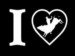 Bull Riding Sayings
