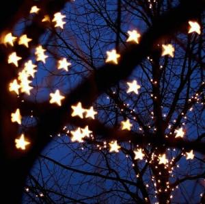 小星星唯美图片:一场樱花一场爱,于是人间情未央