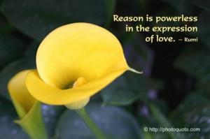 Sad love quotes rumi
