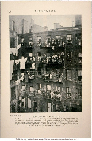 Tenement dwellers, &How can they be helped?& Eugenics: A Journal of ...