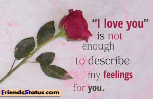 "love you"" is not enough to describe my feelings for you."