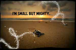 small_but_mighty-45914.jpg?i