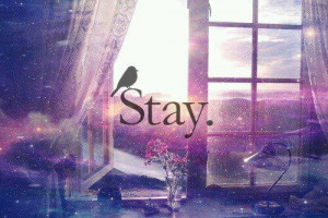 want to stay