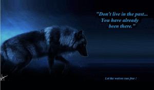 The Beauty of wolves Beauty